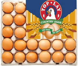 TOPLAY LARGE EGGS